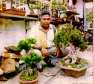 SELF_IMAGE_WITH_BONSAI.JPG